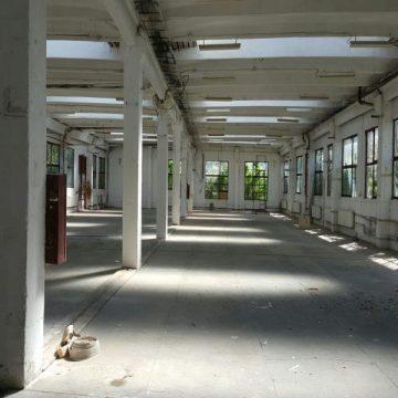 Hale industriale pe Spații Arad